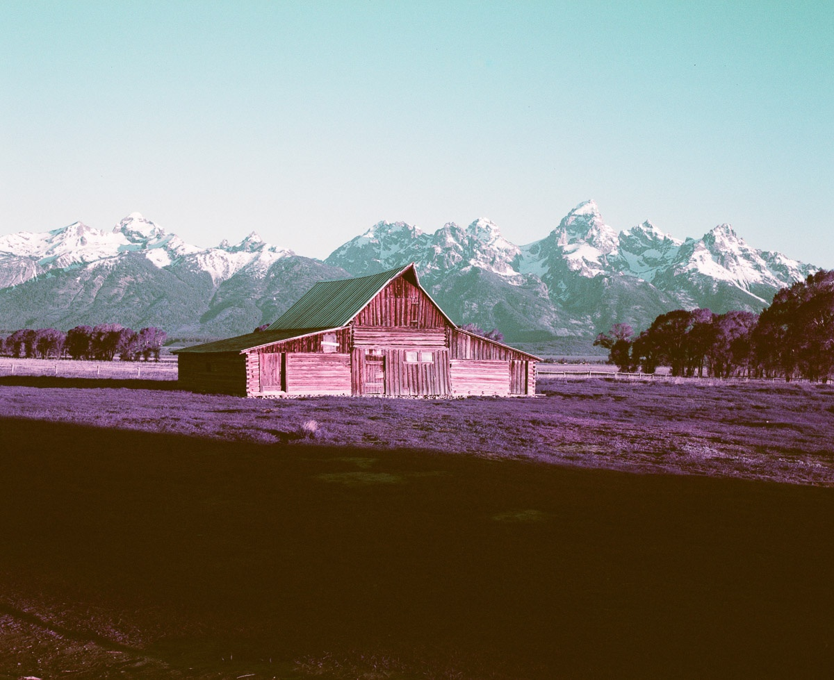 T.A. Moulton Barn, Purple Lomochrome 120 Film