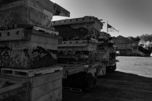 Floating Dock Pontoons, Dysart's Great Harbor Marina, Southwest Harbor Maine