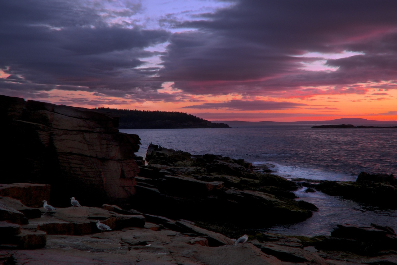 Thunder Hole Dawn, Acadia National Park