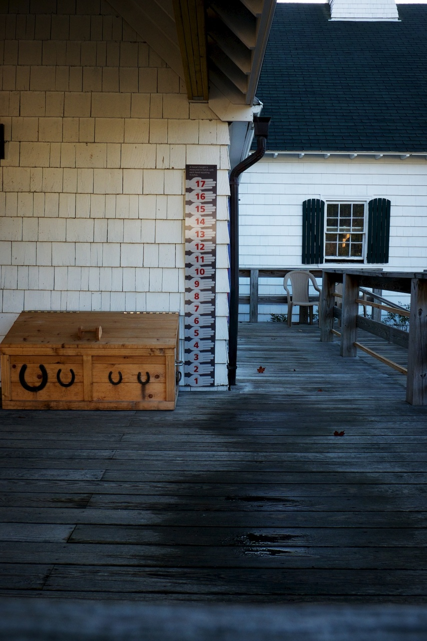 Porch – WIldwood Stables, Acadia National Park